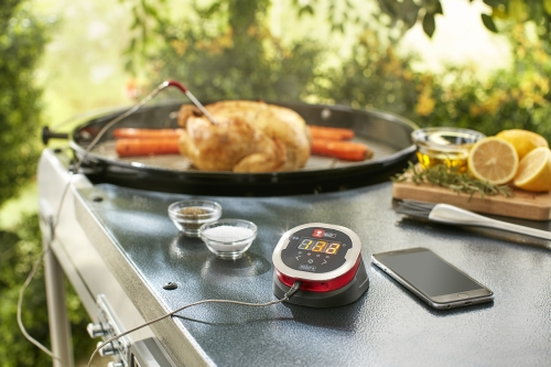 Weber Elektrogrill Mit Thermometer : Weber grill grillsystem igrill holz ziller